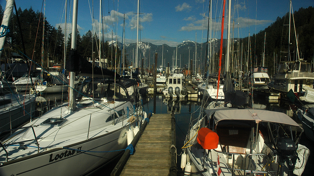 The little marina at Snug Cove was glorious in the sunshine